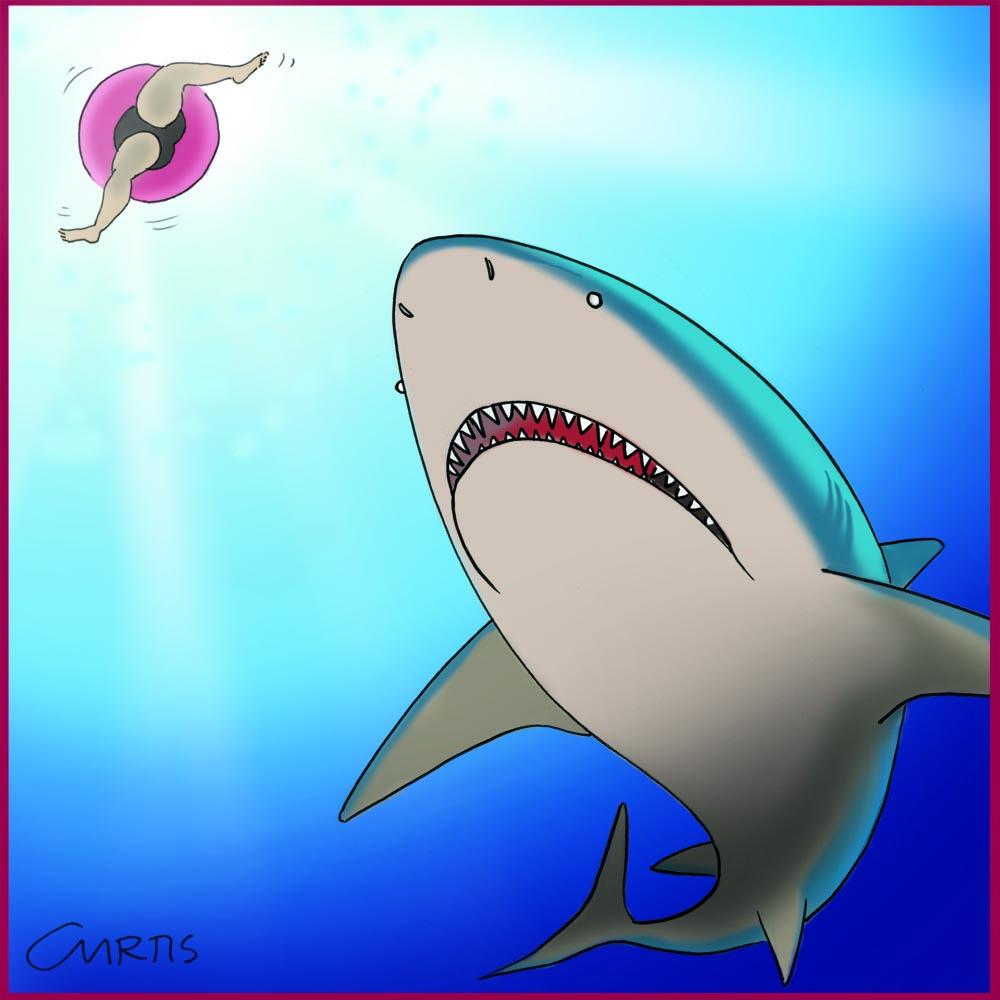 shark cartoon cluestolife