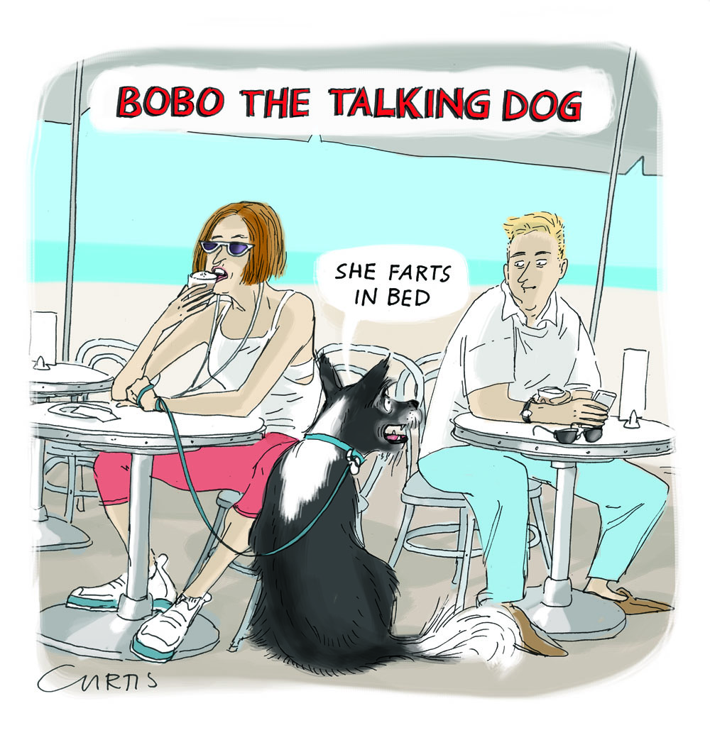 best talking dog joke   cluestolife