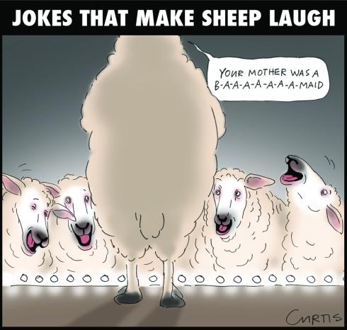 sheep cartoon | cluestolife